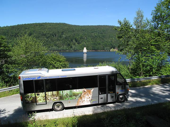 Igelbus im Nationalpark