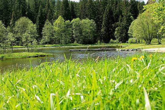 Naturbadesee im Reschbachtal in Mauth