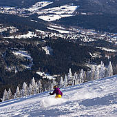 Winter pleasure in the Bavarian Forest